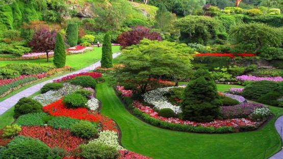 Creating A Landscape Design Plan