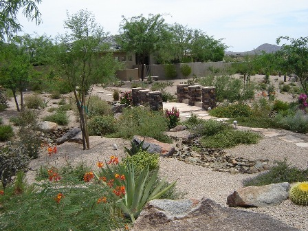 Landscape design envirogreen landscaping design build for Landscape design phoenix
