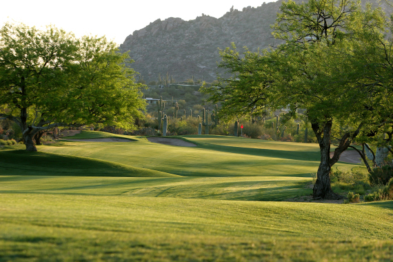 Landscape Mounds Mounds And Elevations Scottsdale