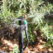 5-install-drip-irrigation