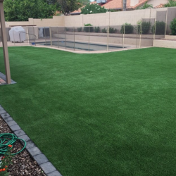 Paver Border Artificial Grass