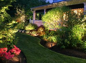 Landscape Design Phoenix Lighting
