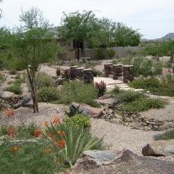 desert-landscaping.10-30.scottsdale-phoenix