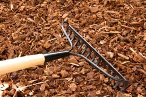 Mulch Cedar