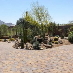 Paver_project_with_desert_landscaping
