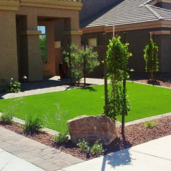 Front_Yard_Turf